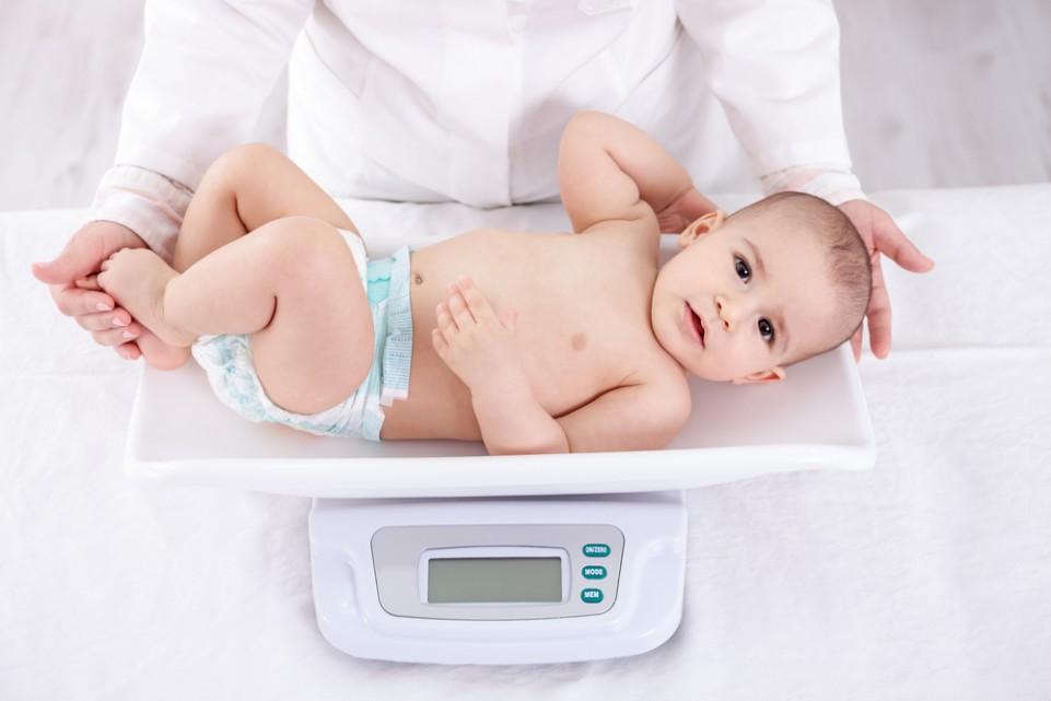 shtimi i peshes te bebet