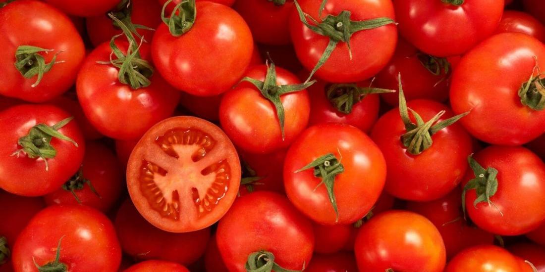 vlerat e domateve, perfitimet nga konsumi i domates, domate