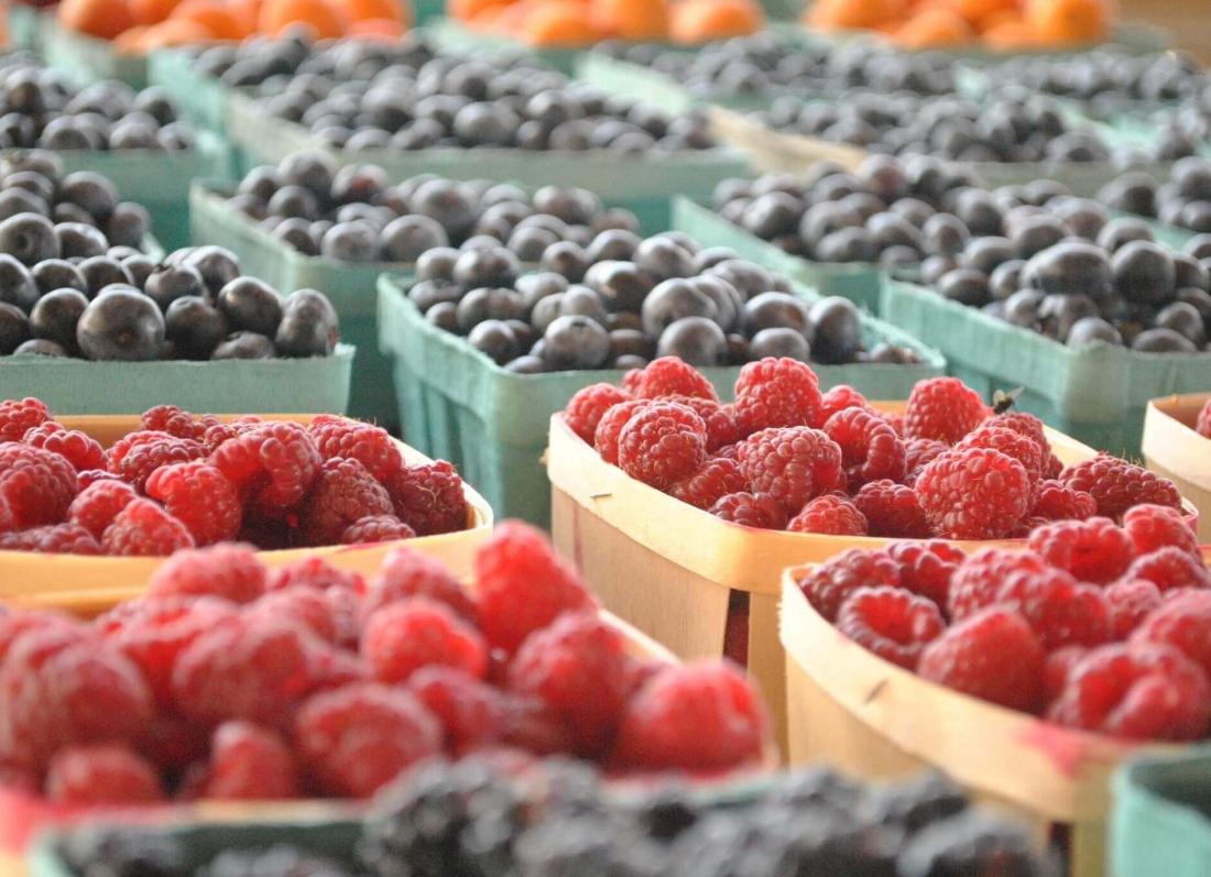 frutat qe duhet te hani kur jeni me diete