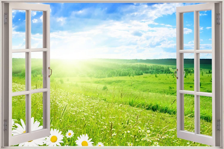 dritarja, vitamina d, diell