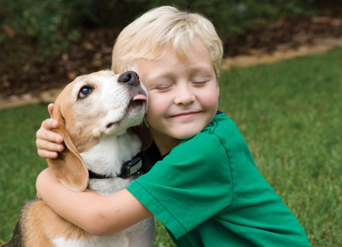 femijet dhe kafshet, imuniteti i femijeve